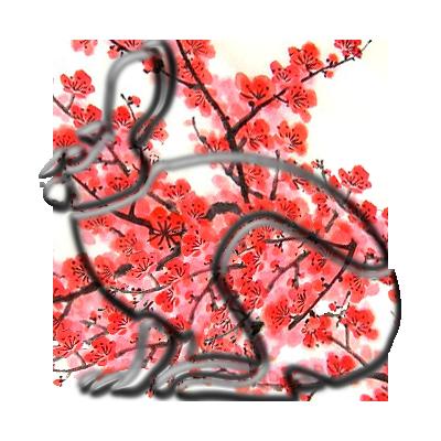 Stříbrný králík